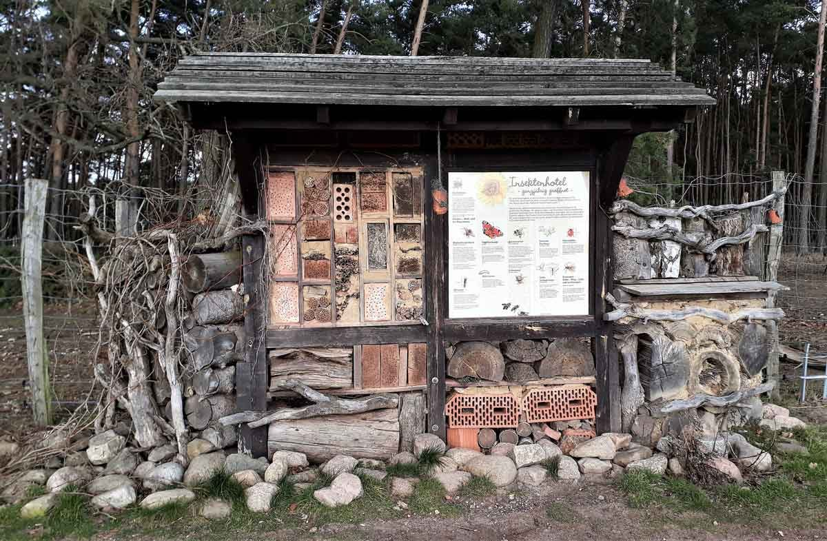 20180212-Insektenhotel-Klaistow-