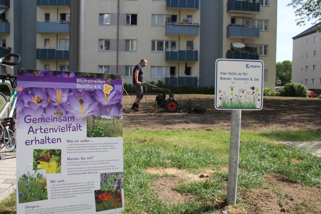 20180523 degewo und Blühstreifen Beelitz e.V. legen Fläche an