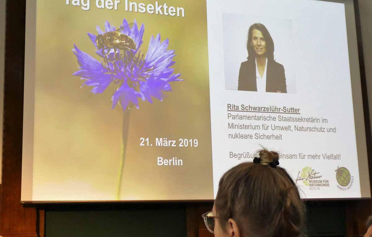 Vortrag auf dem Tag der Insekten am 21.3.2019 Rita Schwarzelühr-Sutter
