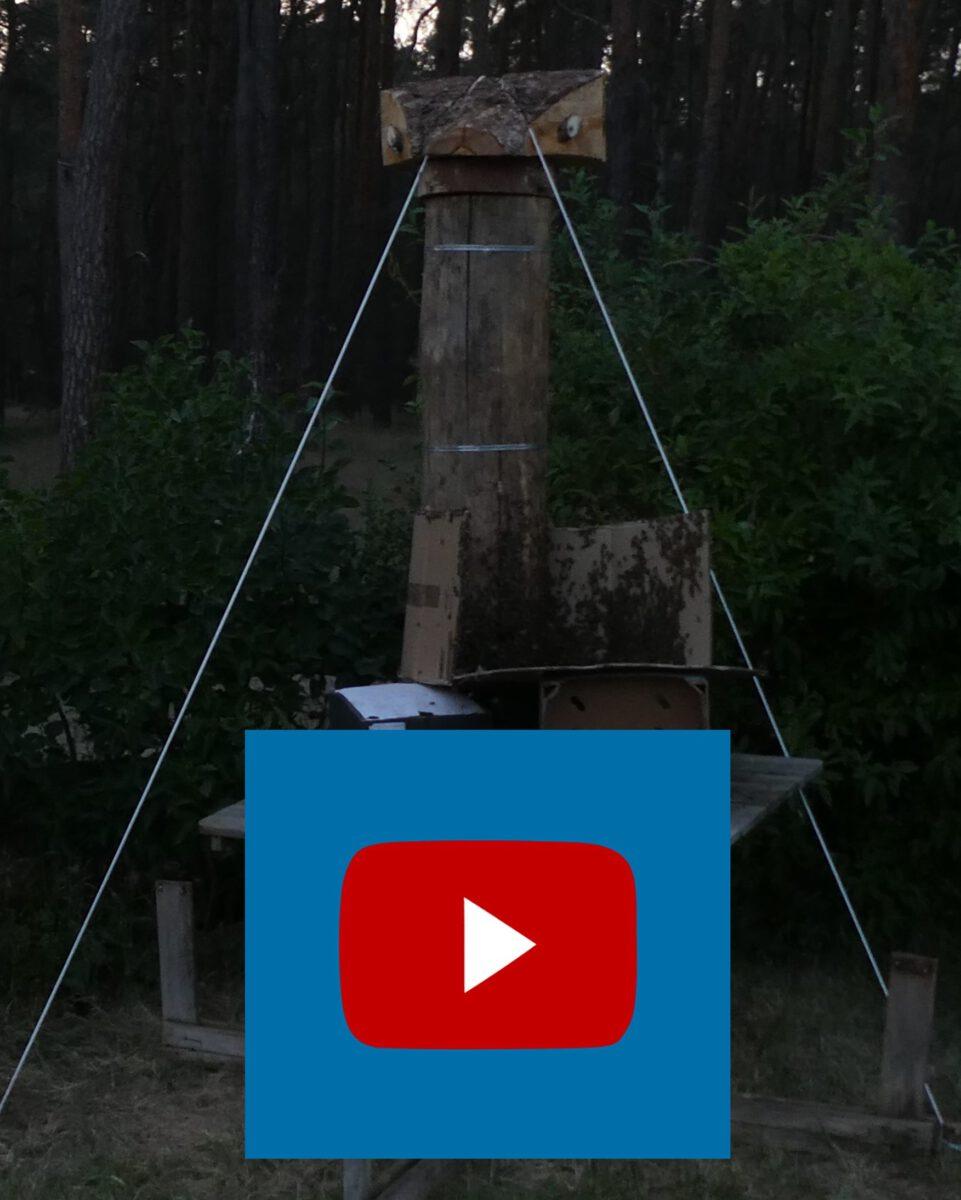 Video vom Bieneneinsetzen