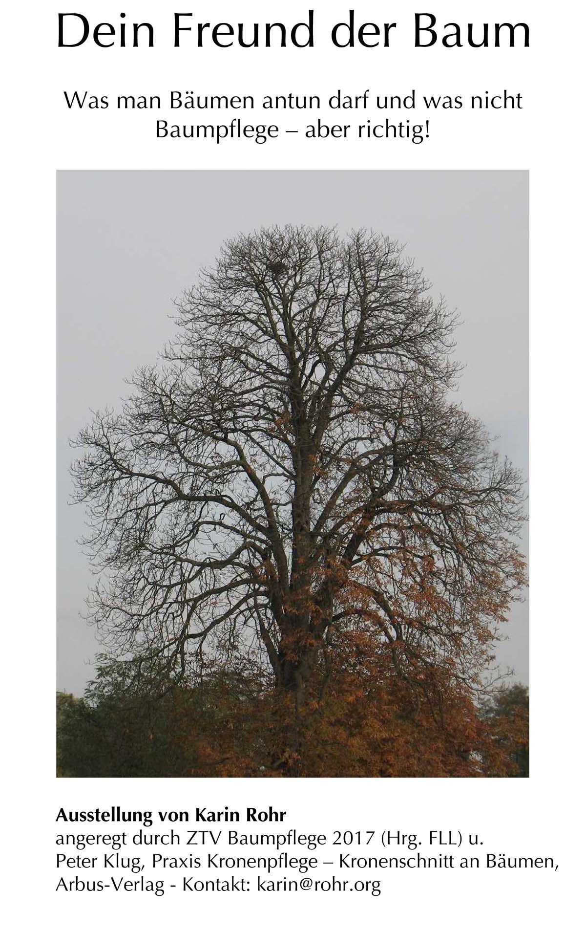 Dein Freund der Baum