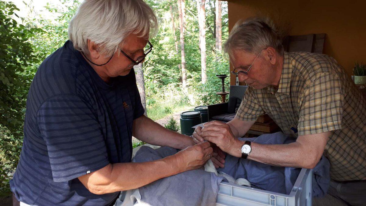 Erste Hilfe Falk Witt und Lutz Pahl